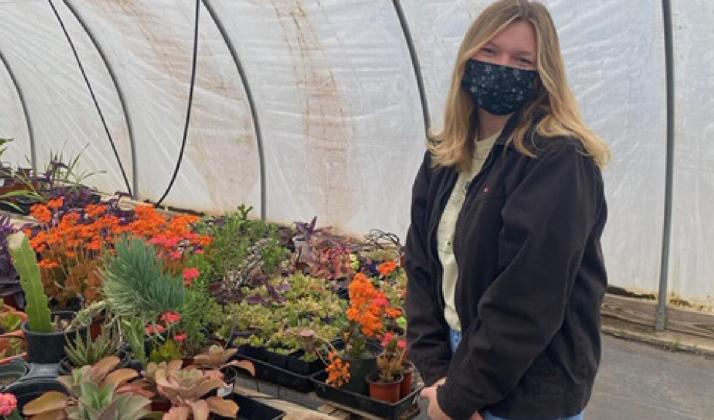 Flowers and other plants are important for many reasons, said Virginia Ring, a student in the greenhouse class at Lampasas High School. COURTESY PHOTO